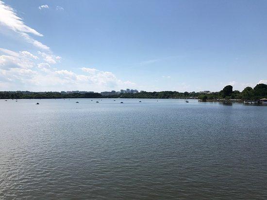 Potomac Park: photo0.jpg