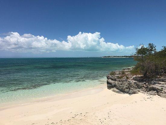 Turtle Cove Picture