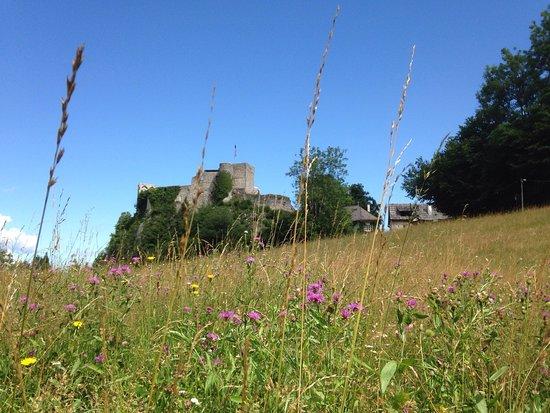 Finkenstein am Faaker See, Austria: Beautiful castle and outdoor music amphitheater!