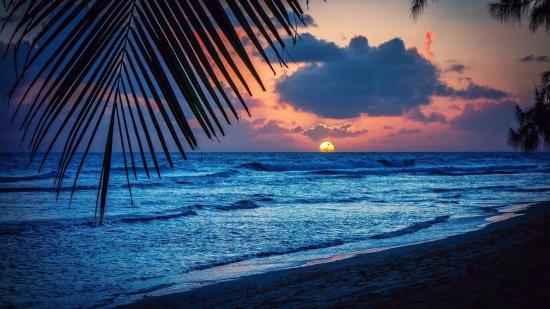 Oistins, Barbados: All stars Taxi service