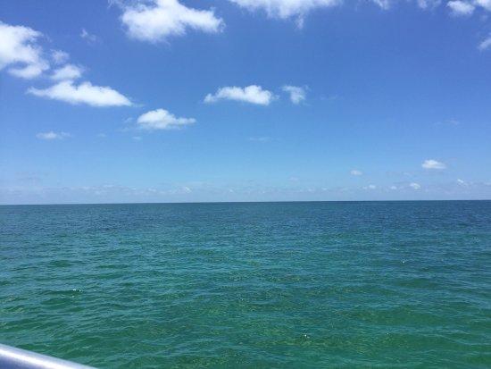 Molasses Reef: photo0.jpg