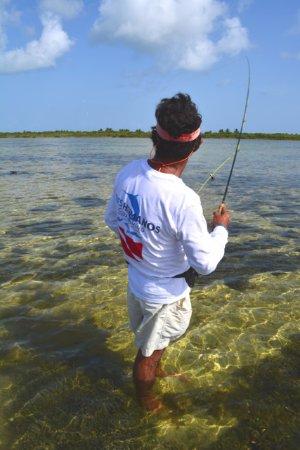 3 hermanos cozumel fishing aktuelle 2018 lohnt es sich