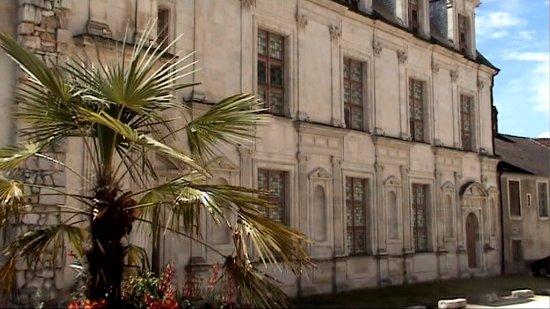 Joigny, Fransa: Château renaissance près de l'église