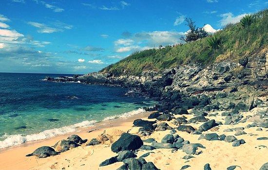 Paia, هاواي: photo3.jpg