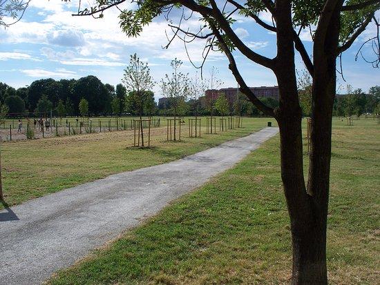 Parco Andrea Campagna