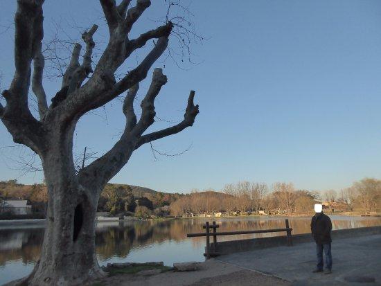 Lac de Besse-sur-Issole