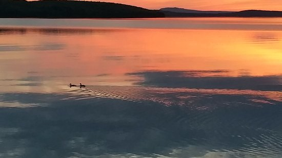 Cozy Moose Lakeside Cabin Rentals: Moosehead Lake - Loons - Mountains and Sunsets - Get Inspired