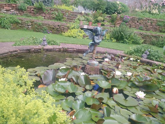 Temple Sowerby, UK: The lilly pond