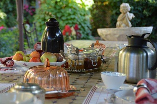 Peyriac-Minervois, France: Le petit déjeuner sous la glycine