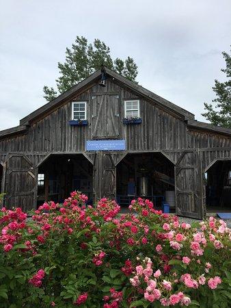 Stanstead, Canadá: Bleu Lavande's distillery