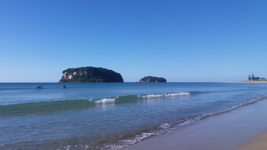 Whangamata, New Zealand: Donut Island Tours