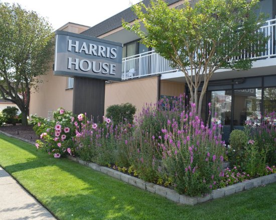 Harris House Motel: Immaculate grounds and rooms
