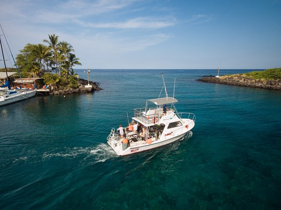 Big Island Divers Kona Reviews