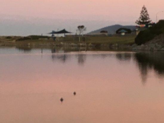 Scamander, Austrália: photo1.jpg