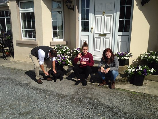 Clareview House: A highlight was the fun we had with the puppies!