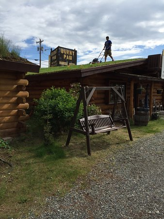 Cabins Outback and Burnt Paw Gift Shop: Weekly mowing of the Gift Shop roof.