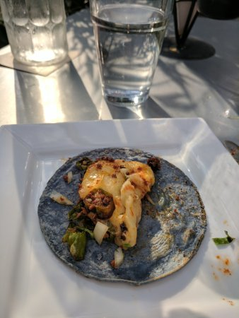 Oak Park, IL: Carne asada, outside patio, queso fon dido, fish tacos