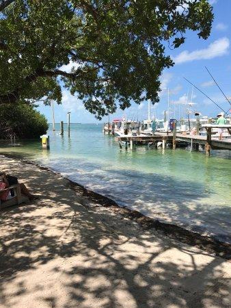 Lake Monroe, Floryda: photo5.jpg