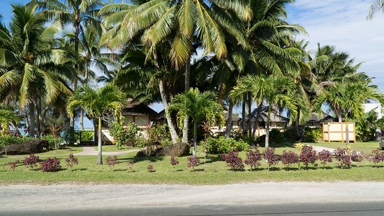 Palm Grove Aufnahme