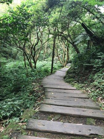 Tucheng Tonghua Park