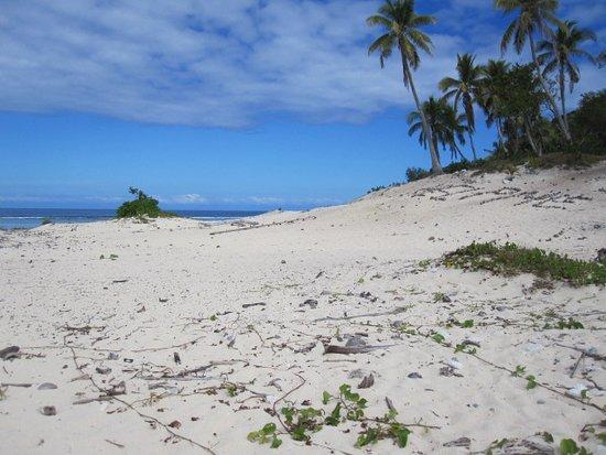 Sheraton Denarau Villas: Modriki the Castaway Island trip. FAB!