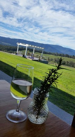 Seville, Australia: Great view to enjoy a lovely Moscato!
