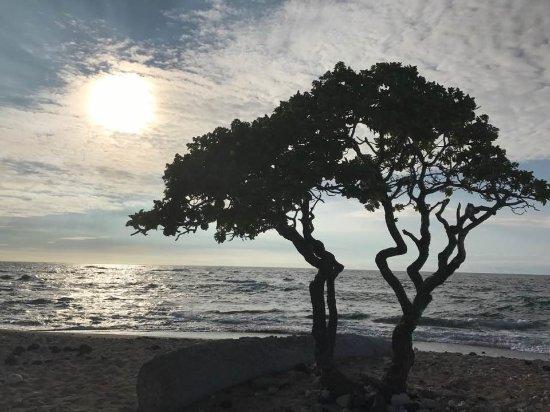 Kona Coast State Park: Beautiful views leading up to sunset