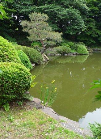 The japanese formal garden tripadvisor for Formal japanese garden