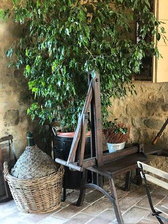 Albinea, Italia: photo3.jpg