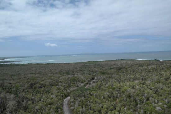 Puerto Villamil, Ecuador: Aussichtspunkt auf der Tour