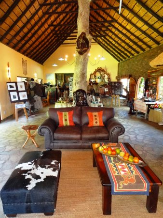 Balule Nature Reserve, South Africa: Lounge and Curio Shop