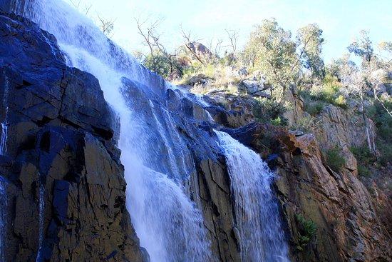 Χάμιλτον, Αυστραλία: photo8.jpg