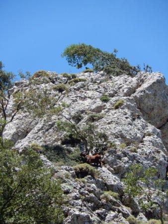 Crete, Greece: Om stil van te worden