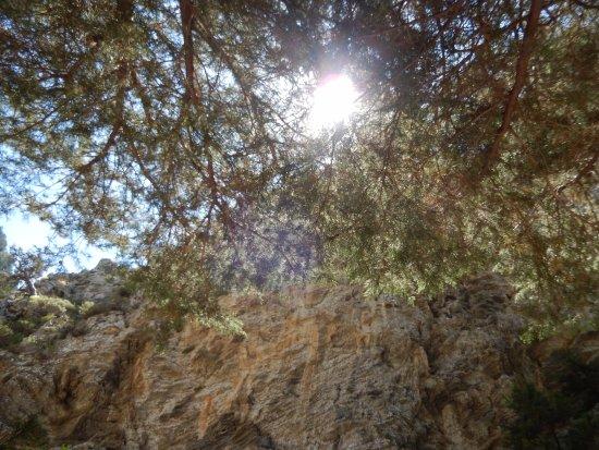 Crete, Greece: De zon komt piepen, de stenen in de kloof geven warmte af!