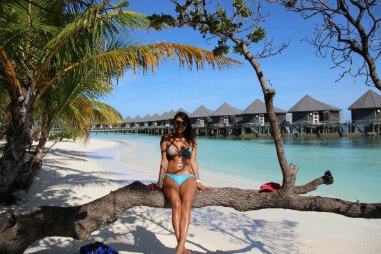 Kuredu Island Resort & Spa : photo0.jpg