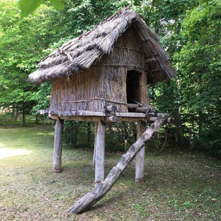 Nibutani Ainu Museum: photo9.jpg