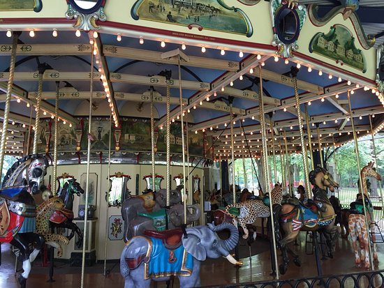 Carousel for All Children