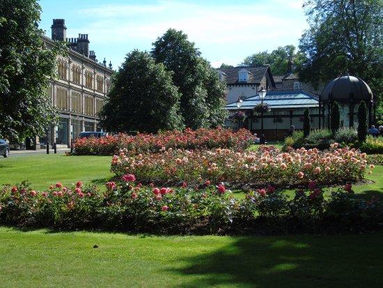 Crescent Gardens