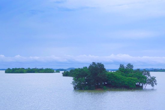 Monsoon Season | Mukutmanipur Dam