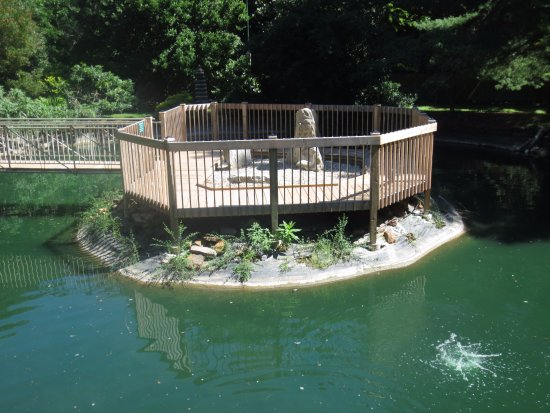 Lendonwood Gardens
