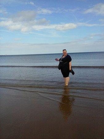 Dog Friendly Beaches Near Filey