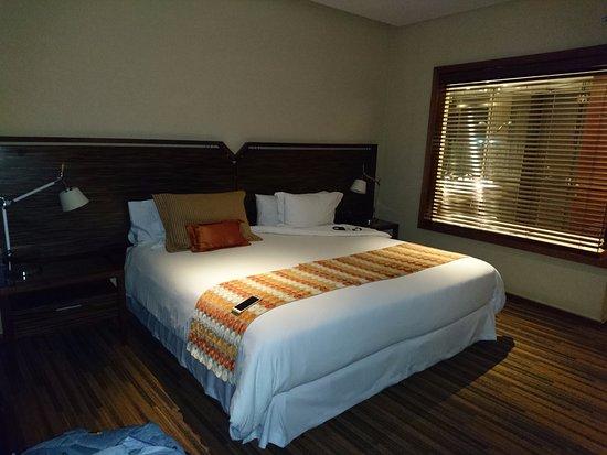 Hotel Dreams Araucania: habitacion