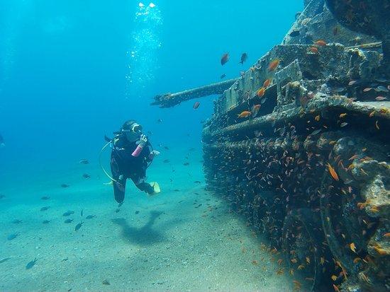 العقبة الغواصين برو