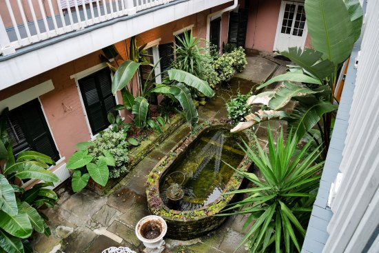 Lamothe House Hotel : Courtyard