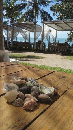 Nauticomar All Inclusive Hotel & Beach Club: IMG-20170627-WA0048_large.jpg