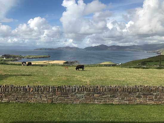 Garnish, Irlandia: This photo was shot from our room in the B&B. Truly a magical place.