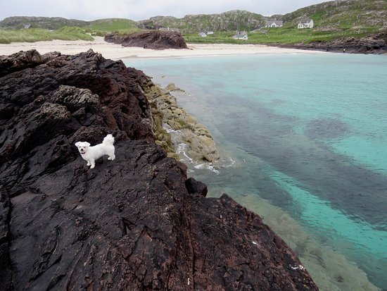 Clachtoll, UK: Beautiful clear waters and beaches