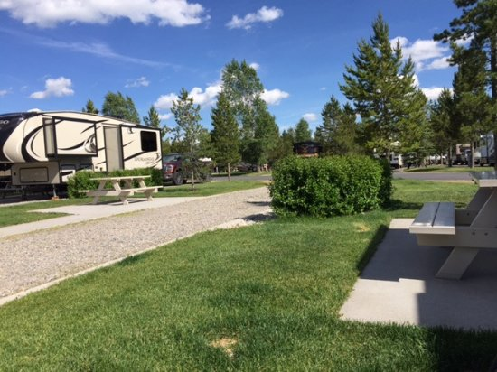 Yellowstone Grizzly RV Park: Bush hides the water, sewage, etc. Nice