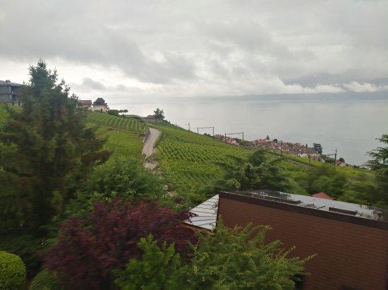Grandvaux, Switzerland: IMG_20170702_083852_large.jpg