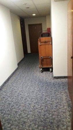 Hotel Beau Rivage Pineta: Un 4 ⭐️che non vale nemmeno 2, 300 euro per una stanza di 16 mq e un bagno di 4, arredamento ann